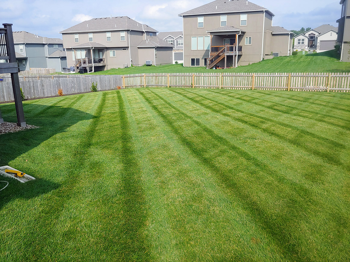 Weekly Lawn Maintenance Service